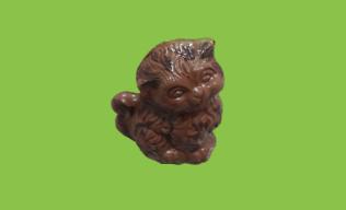 Chat Chocolat Lait 70 gr